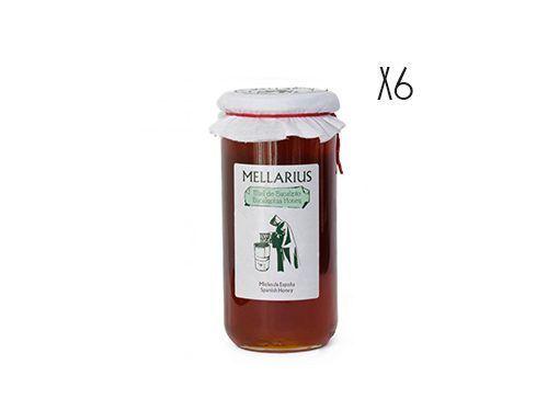 Miel de eucalipto Mellarius 1 kg