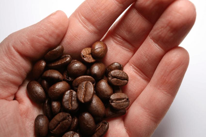 cuál es tu café según tu personalidad