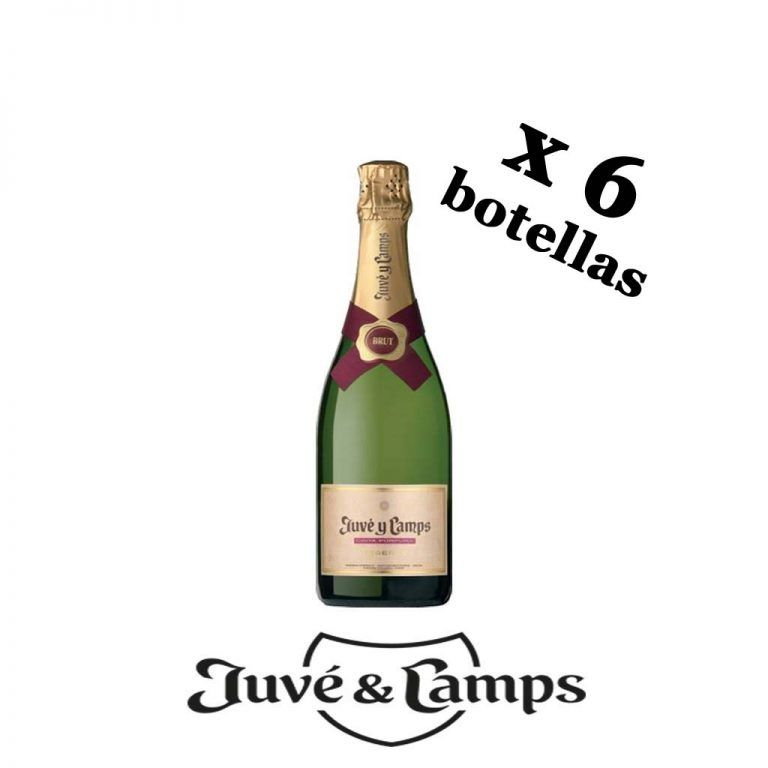 Cava Cinta Púrpura Juvé y Camps panier 6 bouteilles