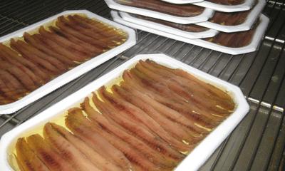 Cómo se hacen las anchoas de Santoña