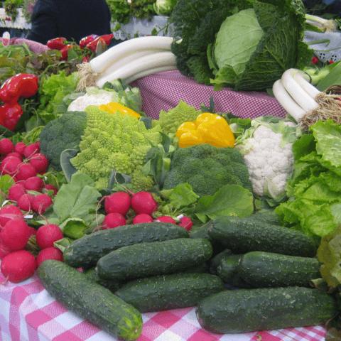 verduras y hortalizas SantoTomas