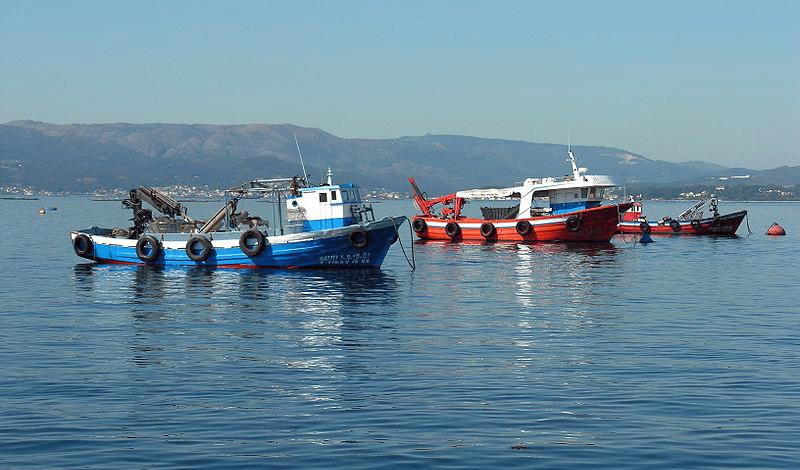 La pesca del Bonito del Norte 2015