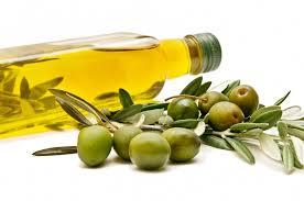 Exportación aceite de oliva