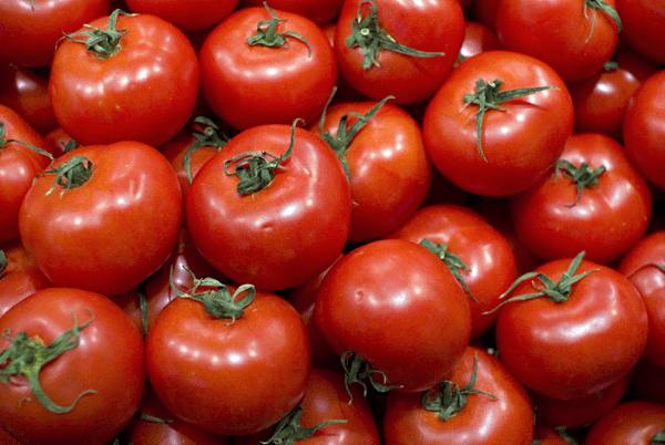 la tomatina 2015