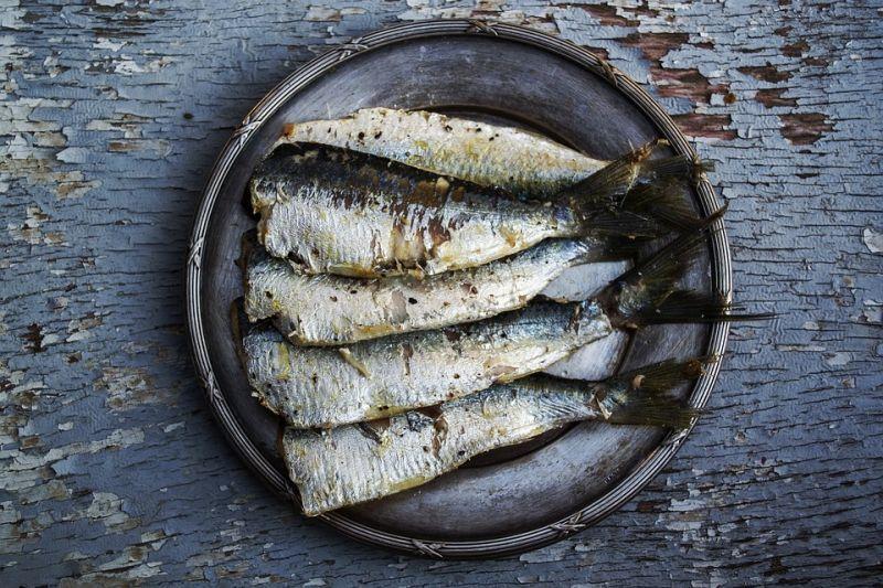Sardinas, ¿qué pescado tiene más omega 3?