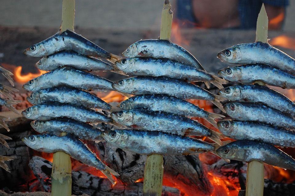 ¿Por qué se llama pescado azul?
