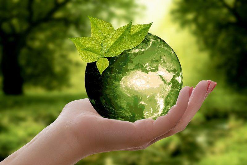 Dia Internacional de la Tierra 2018