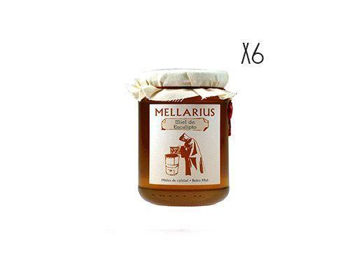 Miel d'eucalyptus Mellarius